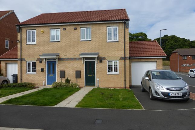 Thumbnail Semi-detached house to rent in Hartoft Square, Hartlepool