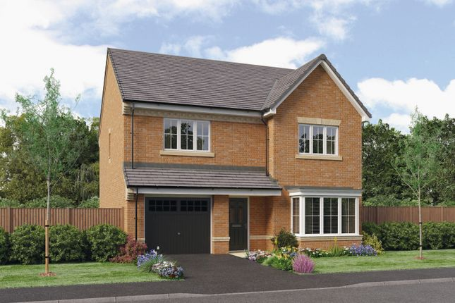 Thumbnail Detached house for sale in The Ryton, Barley Meadows, Cramlington, Northumberland
