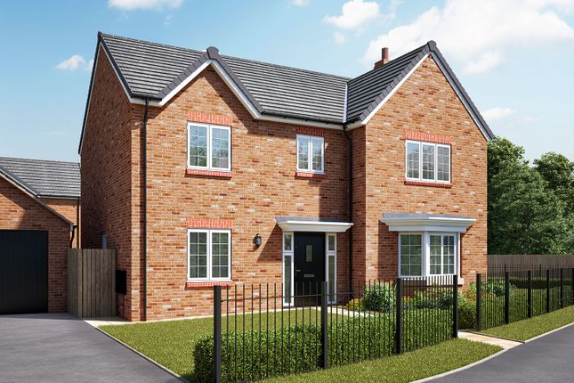 """Thumbnail Detached house for sale in """"The Cottingham"""" at Hartburn, Morpeth"""