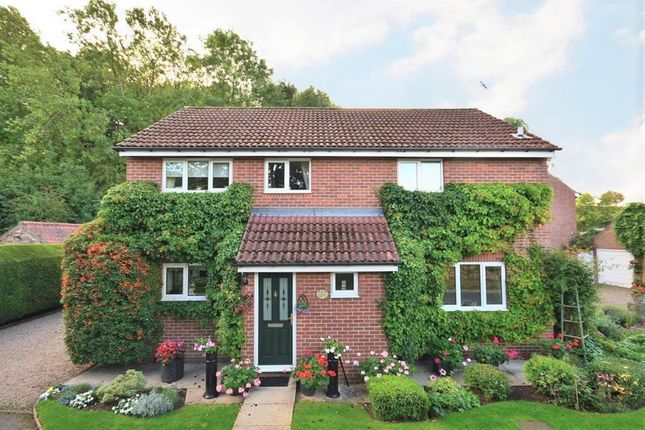 Thumbnail Detached house for sale in Millfield, Marton Cum Grafton, York