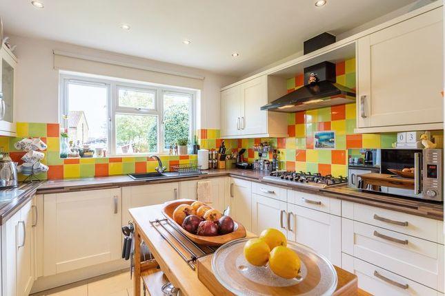 Kitchen Appliances Southend
