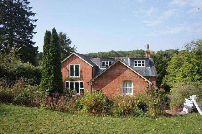 Thumbnail Detached house to rent in Medstead Road, Beech, Alton