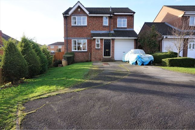 Thumbnail Detached house for sale in Holburn Park, Stockton-On-Tees