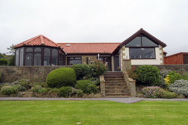 Thumbnail Bungalow for sale in Garden House Lane, Cockfield, Bishop Auckland