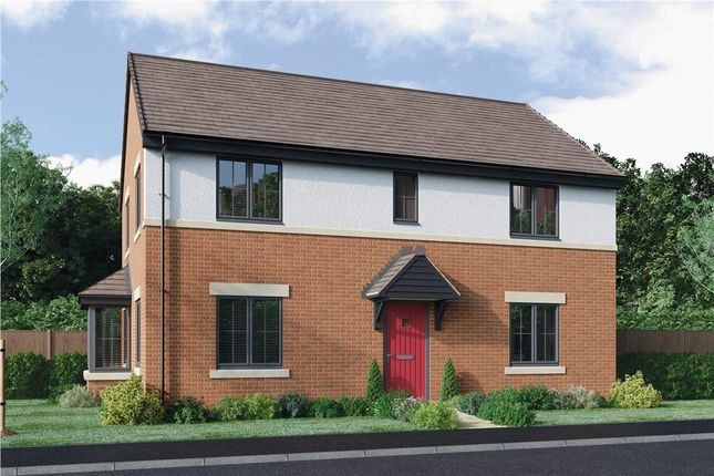"Thumbnail Detached house for sale in ""The Stevenson Alternative"" at Roundhill Road, Hurworth, Darlington"