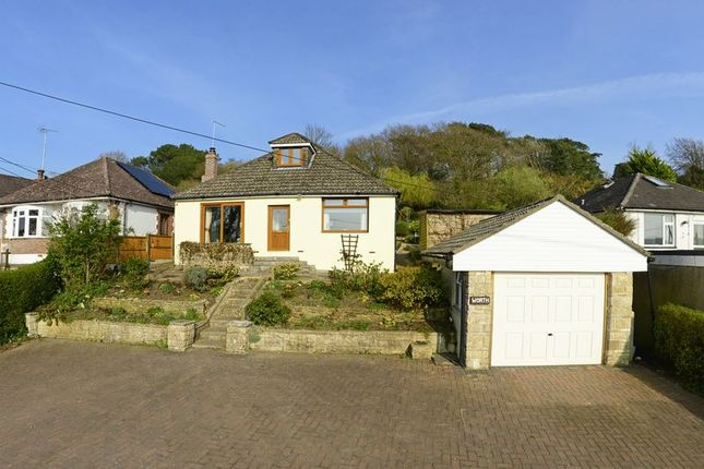 Thumbnail Detached bungalow for sale in Lulworth Road, Wool BH20.
