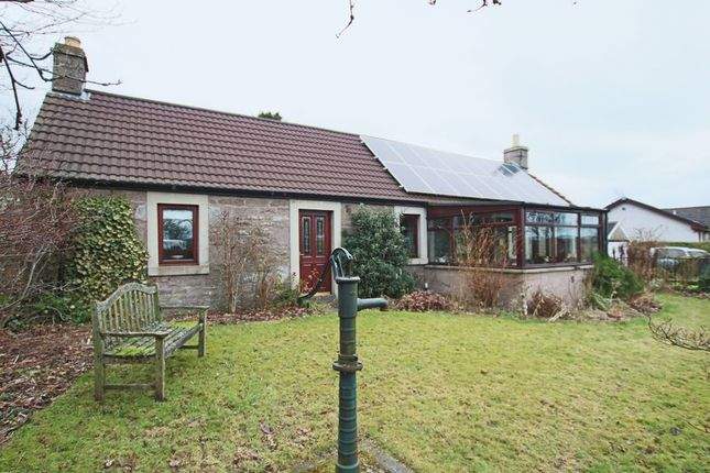 Thumbnail Cottage for sale in Park Road, Letham, Forfar