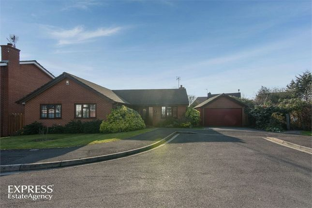Thumbnail Detached bungalow for sale in Oaklands, Cheddar, Somerset