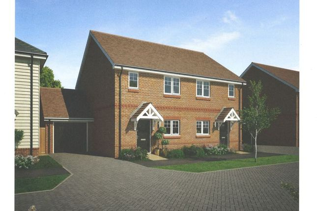 Thumbnail Semi-detached house for sale in Alfold Road, Cranleigh