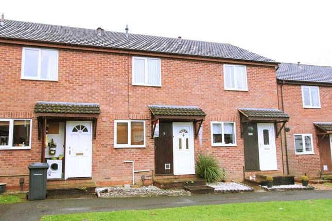Thumbnail Terraced house to rent in Britten Drive, Exeter