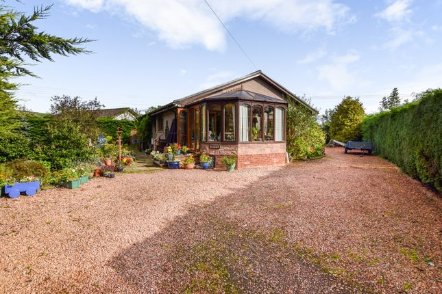 Thumbnail 3 bed detached bungalow for sale in Ashgrove Road, Rattray, Blairgowrie