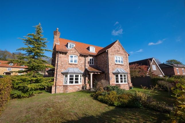 Thumbnail Detached house for sale in Vicarage Lane, Grasby