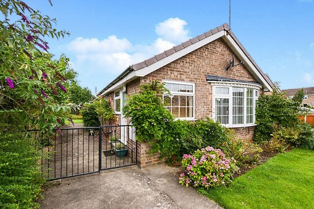 Thumbnail Detached bungalow for sale in Cornwood Way, Haxby, York