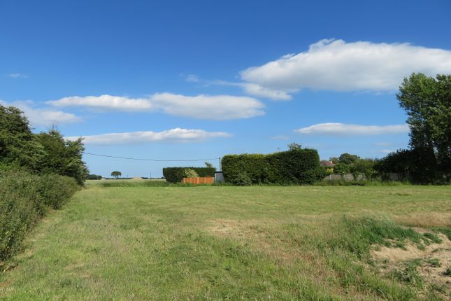Thumbnail Land for sale in Frinton Road, Thorpe-Le-Soken, Clacton-On-Sea