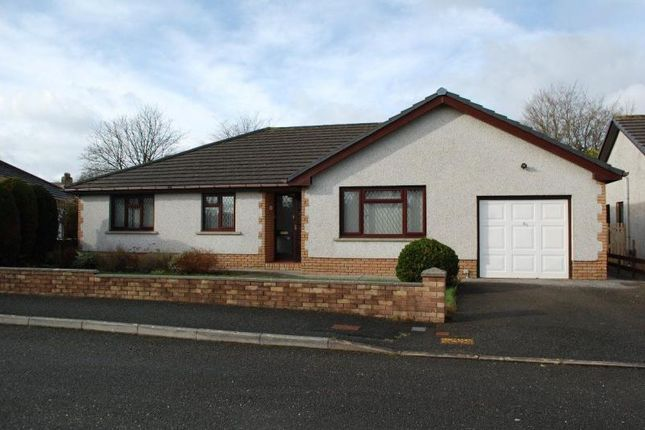 Thumbnail Bungalow to rent in Llys Y Ferin, Nantgaredig, Carmarthen