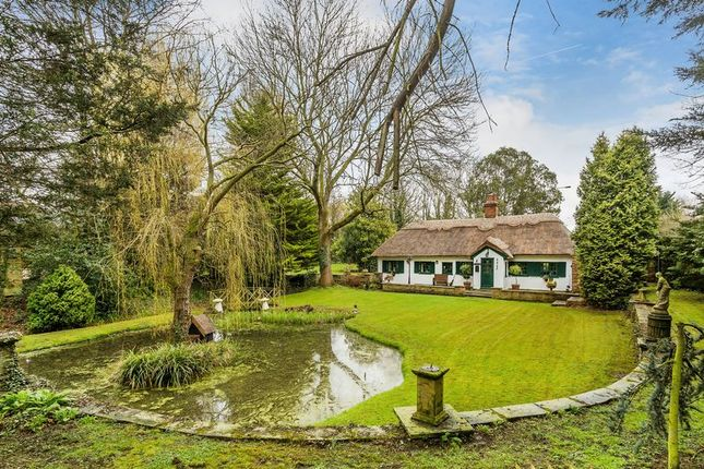 Cottage for sale in Perry Street, Chislehurst