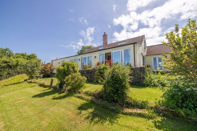Thumbnail Detached house for sale in Upper Milton, Wells