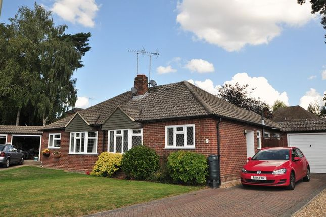 Thumbnail Semi-detached bungalow to rent in Kings Keep, Church Crookham, Fleet