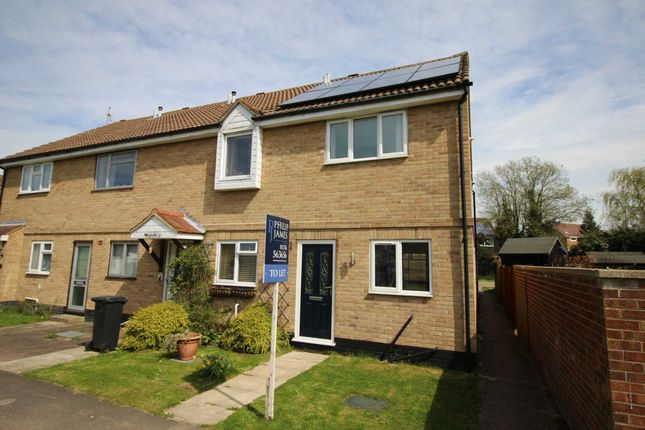 Thumbnail Semi-detached house to rent in Hunt Road, Earls Colne