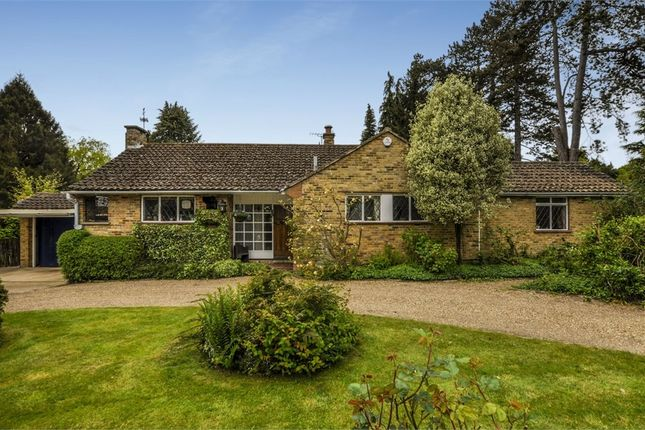 Thumbnail Detached bungalow for sale in Halifax Road, Heronsgate, Rickmansworth, Hertfordshire