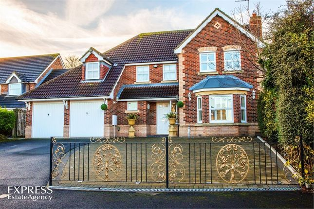 Thumbnail Detached house for sale in The Wynd, North Shields, Tyne And Wear