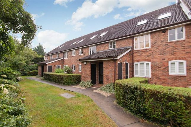 Thumbnail Semi-detached house to rent in Godolphin Place, London