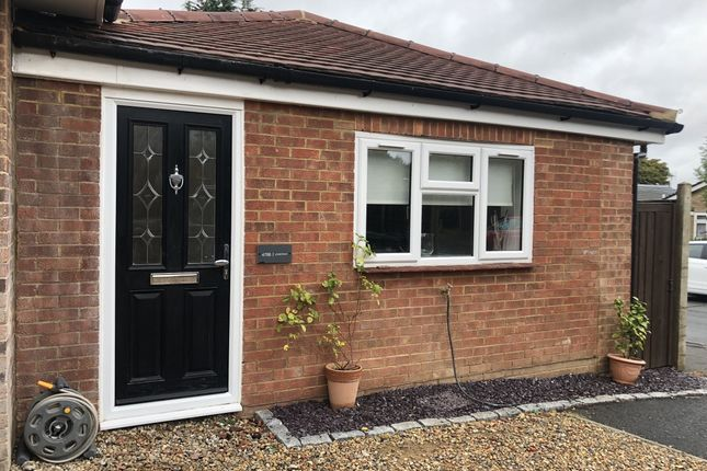 Thumbnail Semi-detached bungalow to rent in Loose Road, Loose, Maidstone