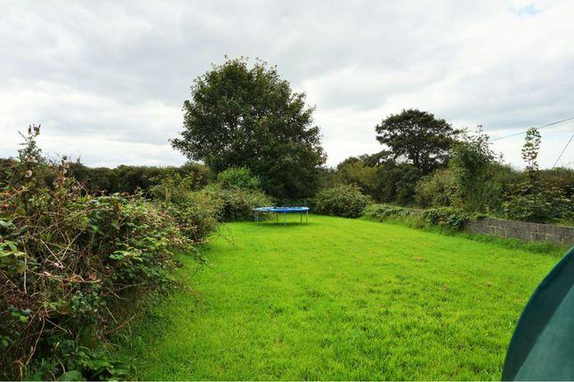 Garden of Crundale, Haverfordwest SA62