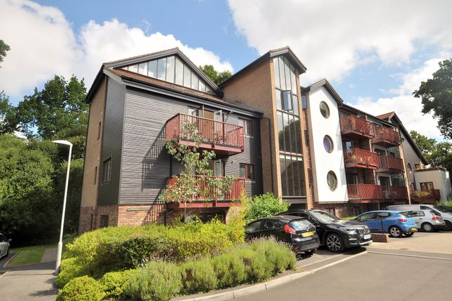 Thumbnail Property to rent in Ripley Court, Couch House Mews, Ferndown