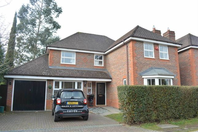 Thumbnail Detached house to rent in Hendon Grove, Epsom