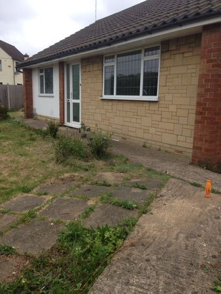 Thumbnail Bungalow to rent in Church Walk, Bletchley