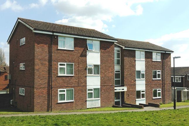 Thumbnail Flat to rent in Woodpecker Road, Petworth