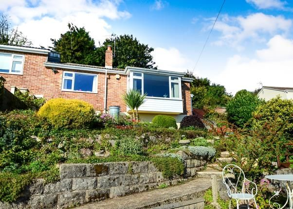 Thumbnail Bungalow for sale in Torquay, Devon, Torquay
