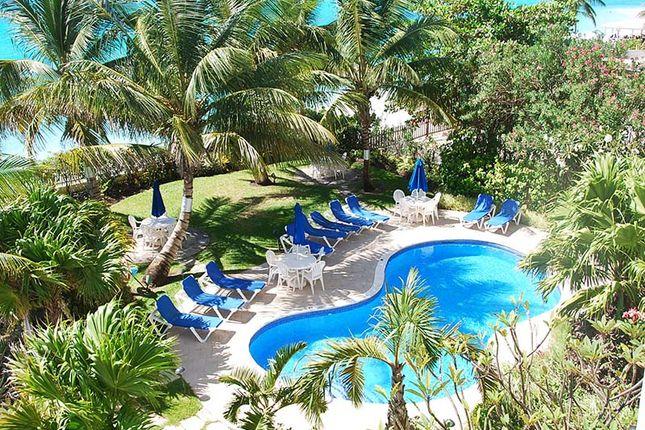 Maxwell Beach Villas - Communal Pool