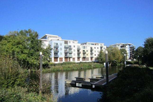 2 bed flat to rent in Clifford Way, Maidstone ME16