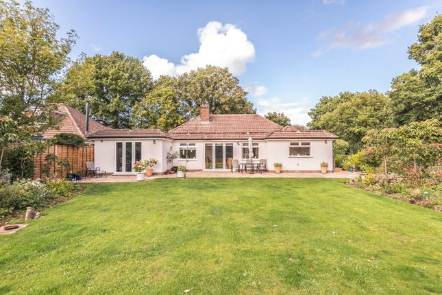 Thumbnail Bungalow for sale in Abbey Road, Medstead, Hampshire