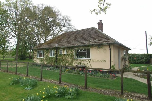 Thumbnail Detached bungalow to rent in Coxs Lane, Upper Bucklebury, Reading
