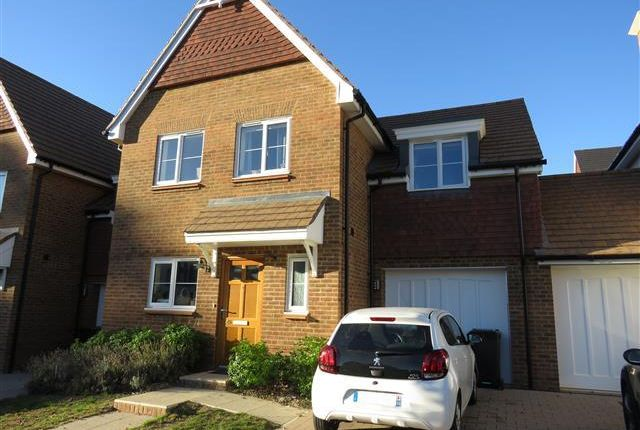 Thumbnail Property to rent in Renfields, Bolnore Village, Haywards Heath