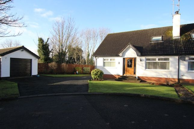 Thumbnail Bungalow for sale in Culnafeigh Green, Dunadry, Antrim