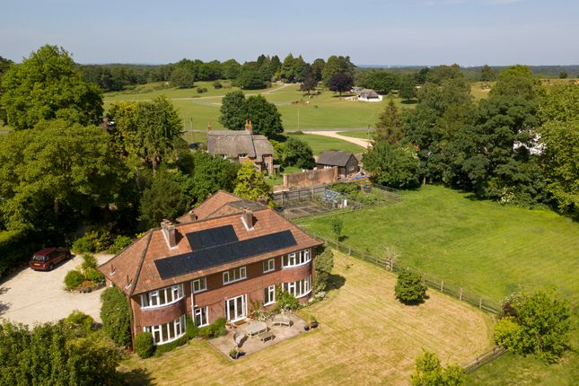 Thumbnail Equestrian property for sale in Beaulieu Road, Lyndhurst, Hampshire