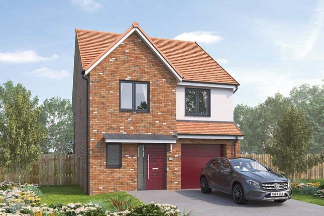 """Thumbnail Detached house for sale in """"The Holbury"""" at Vigo Lane, Chester Le Street"""