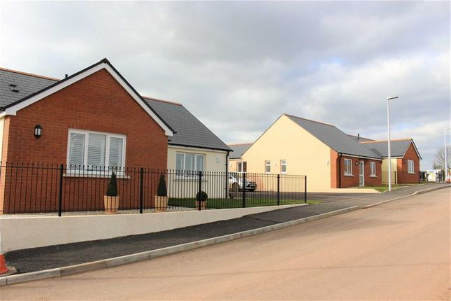 Thumbnail Detached bungalow for sale in Bowett Close, Hundleton, Pembroke