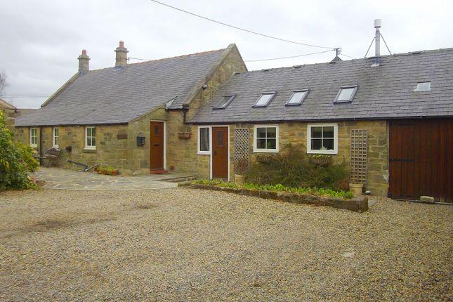 Thumbnail Property to rent in Shotton Lane, Cramlington