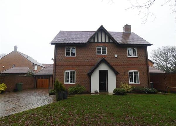 Detached house to rent in St Phillips Grove, Bentley Heath, Solihull
