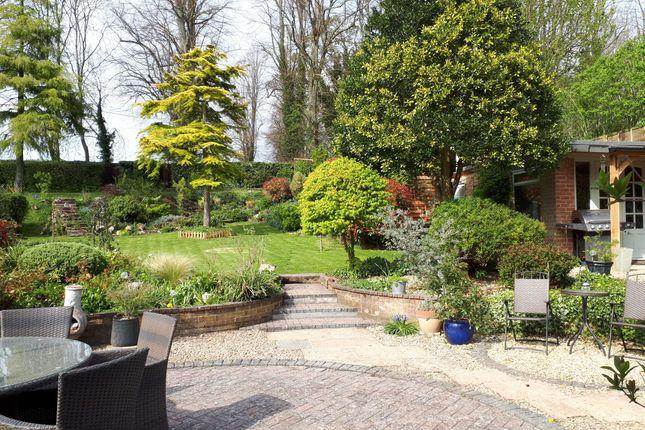 Thumbnail Bungalow for sale in Nether Wallop, Stockbridge, Hampshire