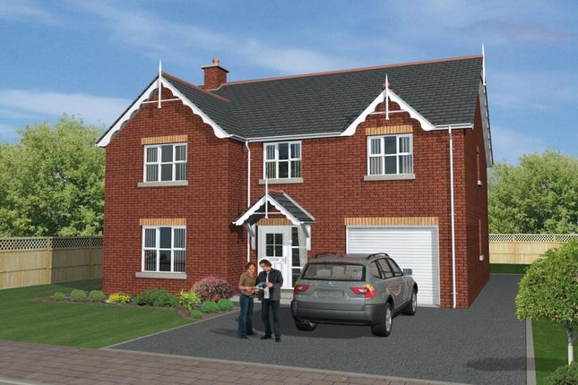Thumbnail Detached house for sale in Shorelands, Main Road, Cloughey
