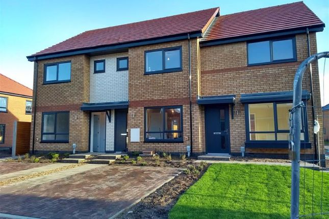 Thumbnail Terraced house to rent in Mulberry Lane, Hull