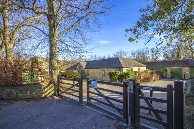 Thumbnail Bungalow for sale in East Mill, Whorral Bank, Morpeth