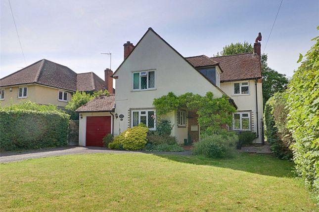Rowney Gardens, Sawbridgeworth, Hertfordshire CM21