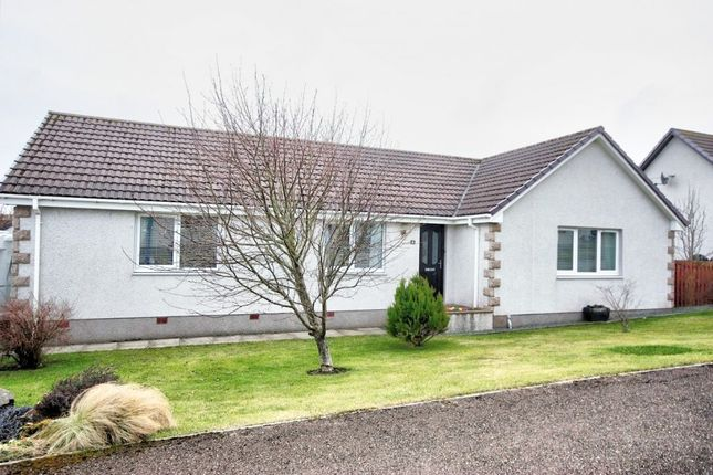 Thumbnail Detached bungalow for sale in Palace Court, Scrabster, Thurso